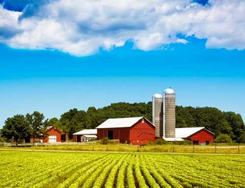 Farmland Tax