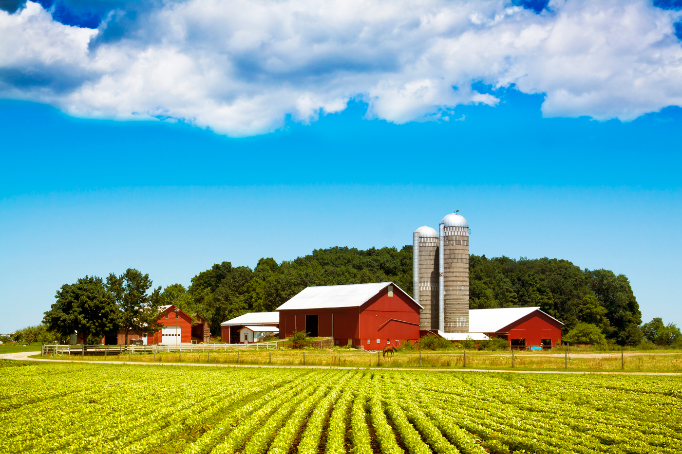 Farmland Tax Jurock Real Estate Insider